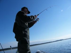 zvejys